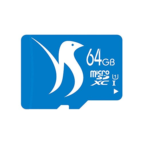 FATTYDOVE Micro SD Card 64GB Microsd Card Class 10 UHS-I High Speed SDXC Memory Card with Adapter for HD Tablet/Kids Edition Tablet/GoPro(64GB-U1)