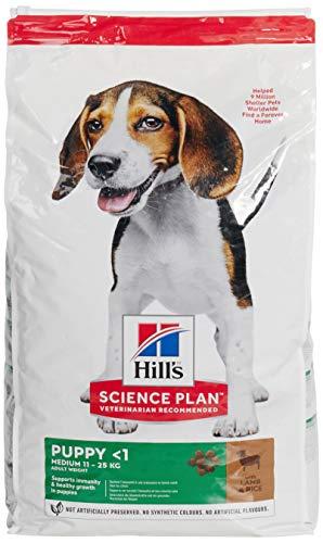 HILLS SCIE Artículo para el hogar, Negro, 14kg, 14