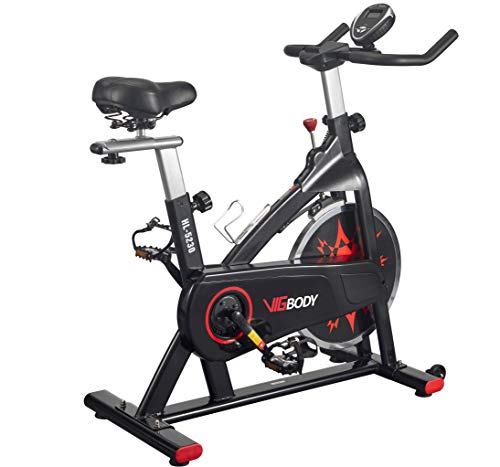 VIGBODY Exercise Bike Indoor Cycling Bike Adjustable Stationary Bicycle for Home Gym Workout Cardio...