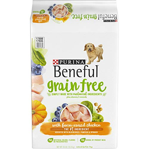 Purina Beneful Dry Dog Food