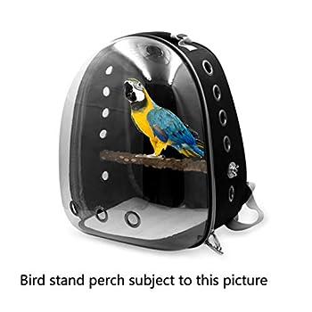 ❤ Sac de transport transparent respirant pour animaux de compagnie, perroquet, oiseau, voyage à 360 ° bleu clair