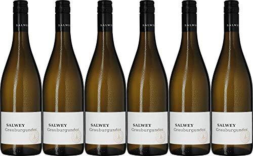 6x Salwey Grauburgunder 2019 - Weingut Konrad Salwey, Baden - Weißwein