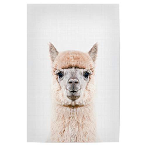 artboxONE Poster 30x20 cm Lama & Alpaka Tiere Alpaca Portrait (Color) - Bild Alpaca Animal Portrait