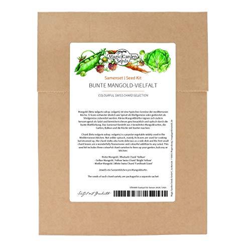 Bunte Mangold-Vielfalt - Samenset mit 3 farbenfrohen Mangoldsorten