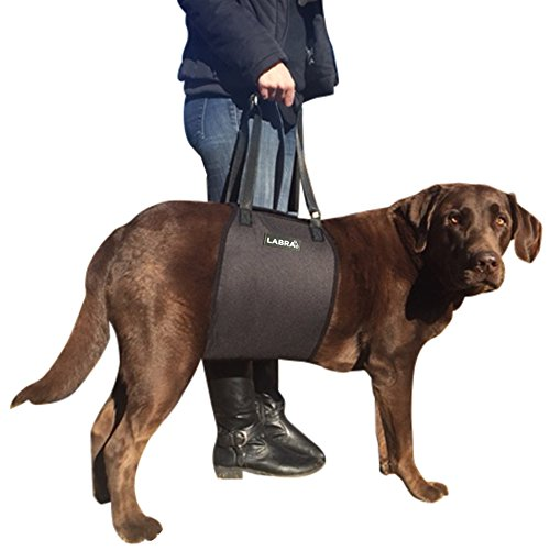 Labra Veterinarian Approved Dog Canine K9 Sling Lift Adjustable Straps Support Harness Helps with Loss of Stability Caused by Joint Injuries and...
