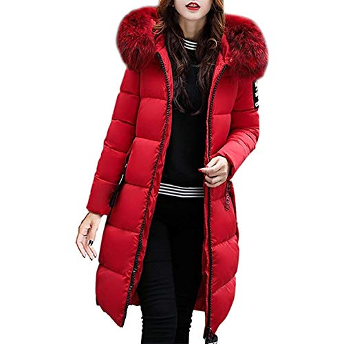 Damen Daunen Puffa Jacke mit Kapuze Damen Damen Winter Kapuzenmäntel Outdoor Warmer Mantel Elegante Strickjacken (Color : Red, Size : M)