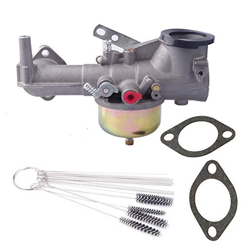 Dosens 491590 Replacement Carburetor Carb Kit for Briggs & Stratton 390811 392152 Carb Fits Briggs & Stratton 191700 192700 193700 Engines with Gaskets & Cleaning Tool kit