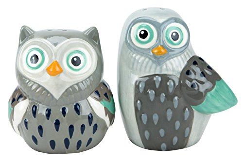 Boston Warehouse Artsy Grey Owl Salt & Pepper Set