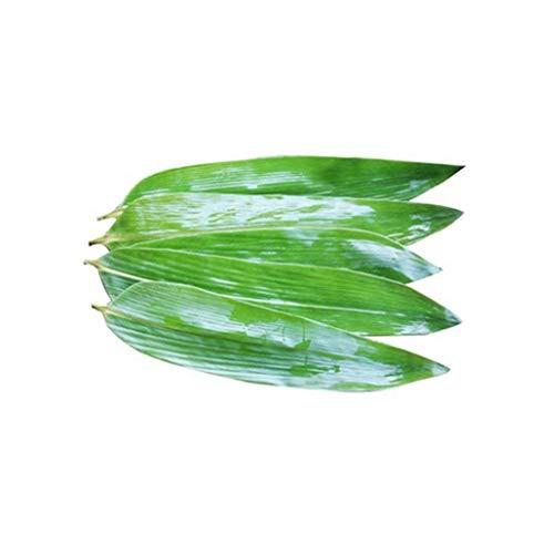 TONGTONG 100 hojas grandes frescas sin cultivar hojas de bambú envasadas al vacío, hojas de bambú salvaje natural barbacoa sushi sashimi cocina decoración material zongzi