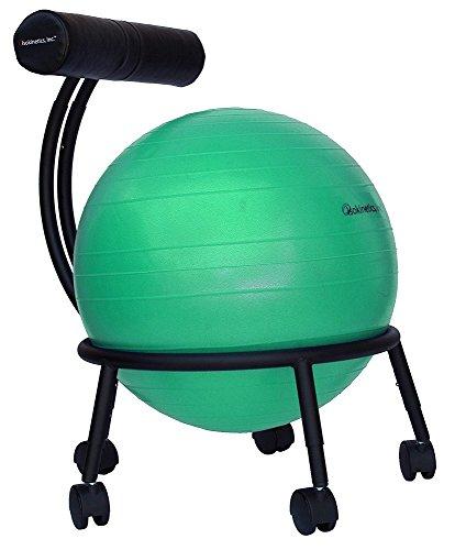 Isokinetics Inc. Brand Adjustable Fitness Ball...