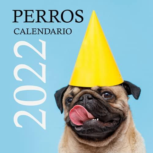 Perros calendario 2022: Calendario de pared 2022, regalo original para perros