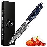 FANTECK Cuchillo de Cocina Damasco, 12cm Cuchillo de Chef de 67 Capas de Acero Damasco, Cuchillo de Cocinero Cuchillos Para Pelar Fruta y Verdura Profesional con el Mango G10