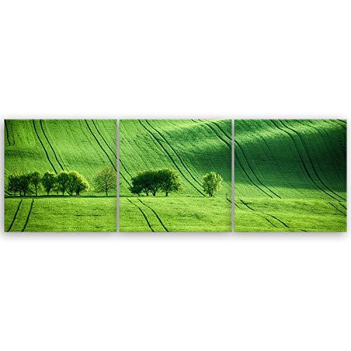 hochwertiges Leinwandbild Panorama Naturbilder Landschaftsbilder - Green Landscape - Tschechische Republik - Natur Grüne Landschaft Grün - 120 x 40 cm mehrteilig (3 teilig) 2213 O