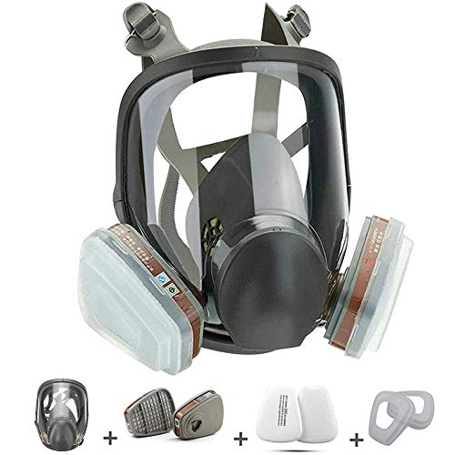 RANKSING Full Facepiece Reusable Respirator ,6800 For Paint, Wide Field of View,Widely Used in Dust,Paint spary,Woodworking,Decoration and Polishing and other works