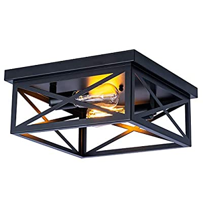 Industrial Close to Ceiling Light Fixtures, Farmhouse Ceiling lamp2-Lights,Caged Geometric?Flush Mount, for Kitchen Island Dining Room Bedroom