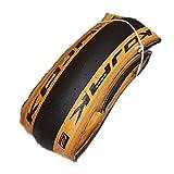 BROMPTON ブロンプトン CHPT3仕様 SCHWALBE KOJAK TIRE BLACK/TAN WALL 16x1 1/4 (ETRTO 32-349) シュワルベ コジャック タイヤ ブラック/タン 16インチ