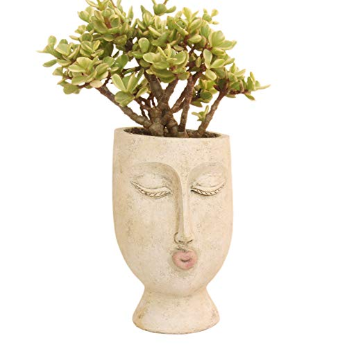 IFUNEYS Head Planter Face Flower Pot Succulent Plant Pots Indoor Outdoor with Drainage Hole (Ms Head...