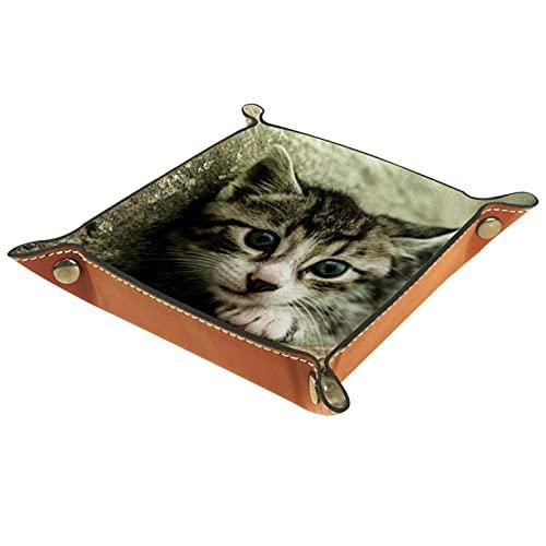 Soporte de bandeja de patrón de gato para mesita de noche o entrada