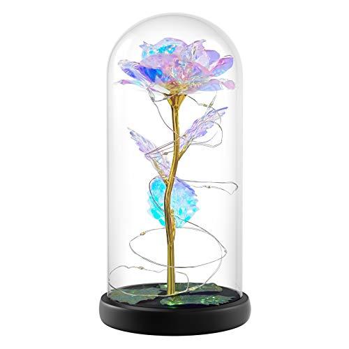 Schöne und Das Biest Rose, Galaxy Flower Rose Geschenk für Freundin, Ewige Blume im Glas Einzigartige Geschenke für Frauen, Geburtstag, Valentinstag, Thanksgiving, Weihnachten, Jubiläum