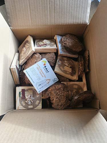 PetitBois d'allumage ultra-sec avec 10 allumes feux- 5 kg - Rondelles de bois compressé 100% propre - idéal pour allumer tout type de foyers: cheminée, poêle, insert, four. Fabriqué en France