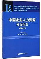中国企业人力资源发展报告(2019)