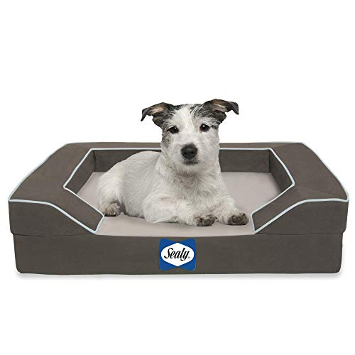 Sealy Lux Pet Dog Bed | Quad Layer Technology with Memory Foam, Orthopedic Foam, and Cooling Energy Gel. Machine Washable Cover. Small, Modern Gray