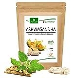 MoriVeda® Ashwagandha cápsulas 600mg, 120 unidades, la baya del sueño para el equilibrio, y la paz interior en el Ayurveda de la India y África, vegano y sin gluten, 100% polvo de raíz