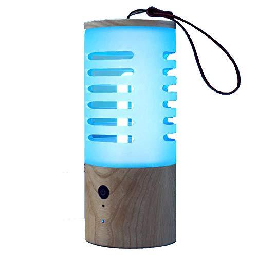 UV-Ozon-Desinfektion und Milbenentfernungslampe, Qchy, Haushaltsfahrzeug, USB-Ladekabel, Dual-Antivirus-Mini-Sterilisator für Milbenentfernung, Geruchsentfernung und Formaldehydentfernung
