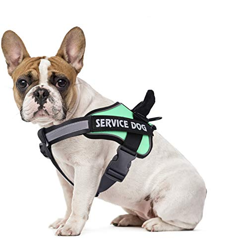 MUMUPET Dog Harness No Pull Pet Harness Adjustable Service Dog Vest For Small Dogs Easy Control, 3M Reflective Oxford Material Vest Outdoor Walking, 2 Metal Rings and Handle No More Tugging or Choking