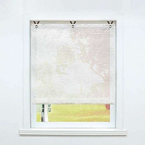 SCHOAL Raffrollo ohne Bohren Raffgardinen Ausbrenner Gardinen Transparent Ösenrollo Weiß Vorhänge mit Ösen 1 Stück BxH 80x130 cm Muster #2