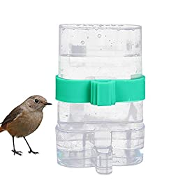 Bird Feeder Indoor Outdoor Cage Supplies Water Parrot Utensils Automatic Dual Use Home Garden Durable Drinking Fountain Leakproof Easy Clean Transparent