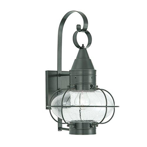 Norwell Lighting 1512 Medium Wall Mount Outdoor One Light Classic Onion (Gun Metal w/Seedy Glass)
