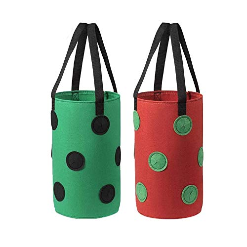 Strawberry Planting Bags, 2 Pieces Hanging Strawberry Grow Bags, Breathable Strawberry Planter Bags, Fabric Planting Containers with Growing Holes, for Strawberries, Herbs, Flowers(3Gallon,20x35CM)
