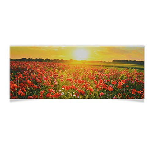DRULINE LED Wandbild | Leinwand | Bild | Beleuchtet | Batteriebetrieben | Fotografie | Indoor | Blumenwiese | Keilrahmen | 100 x 40 x 2 cm