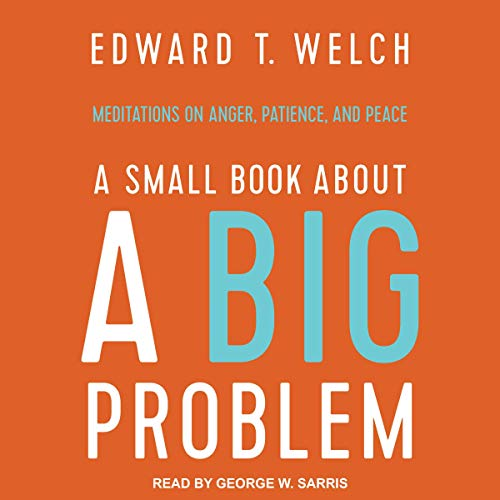 A Small Book about a Big Problem audiobook cover art