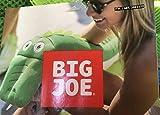 Big Joe Pool Petz Dragon