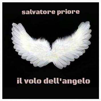 Il volo dell'angelo