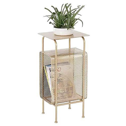 DNNAL Sofa Beistelltisch, Startseite Multifunktionale Wohnzimmer Metall Couchtisch, Simple Storage Shelf Garten Magazine Rack Display-Showcase