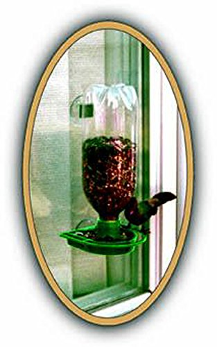Gadjit Soda Bottle Wild Bird Window Feeder Kit, Suctions to Outdoor Windows Brings Birds Right Up Close, Just Add Bird Seed, Fun Project for Kids at Home (Green)