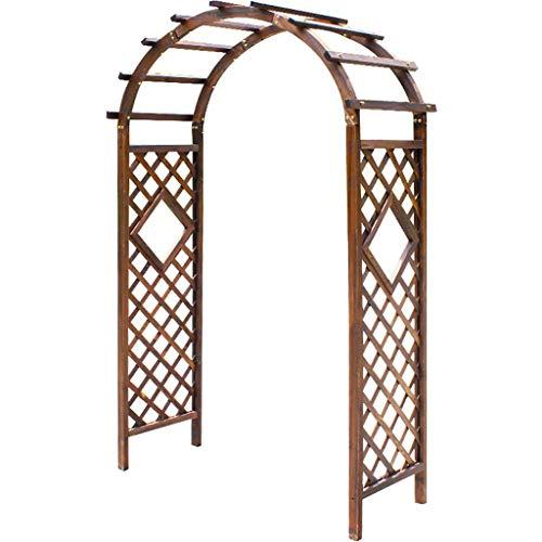 Support de Plante en Arc, Arc de pergola de tonnelle de Jardin pour diverses Plantes grimpantes, intérieur extérieur idéal pour la Cour de Patio de pelouse d arrière-Cour