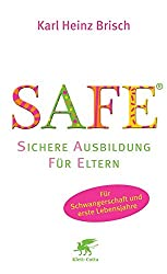 Cover Buch SAFE
