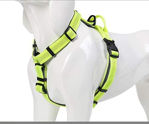 WINHYEPET Winhyept WHP16171 Hundegeschirr, leicht, verstellbar, reflektierend, weicher Griff, für alle Rassen, 4 Farben, 5 Größen, M, Neongelb