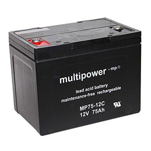 Batería de plomo gel MP75–12C 12V 75Ah AGM vellón de tecnología Pegasus...