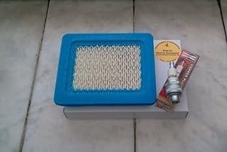 ACAMPTAR Filtre /à Air de Carburateur pour Briggs et Stratton Gold 6.25 6.75 Mrs Push Mower 675 190Cc