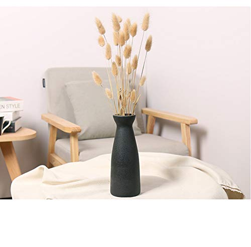 Classics Small Matte Finisher Ceramic Vases Use in Home Office Decor for Flowers, Pampas Grass & Dried Flower by Ware Science