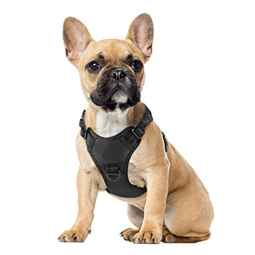 rabbitgoo Dog Harness, No Pull Dog Vest Harness with Shock-Absorbing Bungee Straps, Adjustable Dog Walking Harness with Easy Control Handle, Reflective Pet Vest Harness for Large Medium Size Dogs