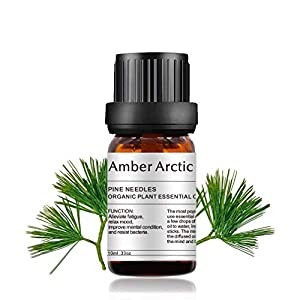 Pine Needles Essential Oil Aromatherapy 100% Pure Organic Oil for Diffuser, Massage, Skin Care - 10ML