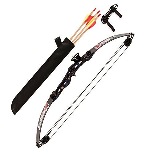 Arco Compound Bow con 3 Frecce 24 26 Libbre da Tiro Professionale KIT Faretra
