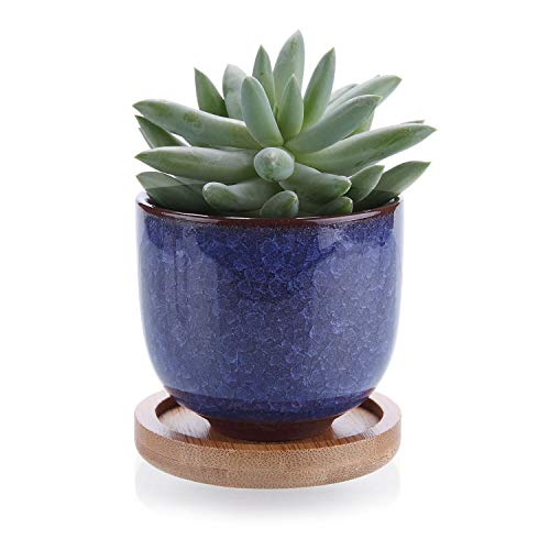 Oneriverspring40 Plant Pot 2,5 Inch Keramische Succulente Cactus Plant Pot Bloem Pot Container Planter Blauw Met Bamboe Trays