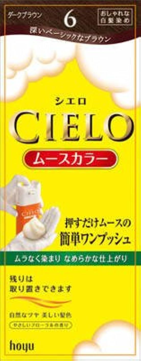異常円形ヶ月目シエロ ムースカラー 6 ダークブラウン × 5個セット